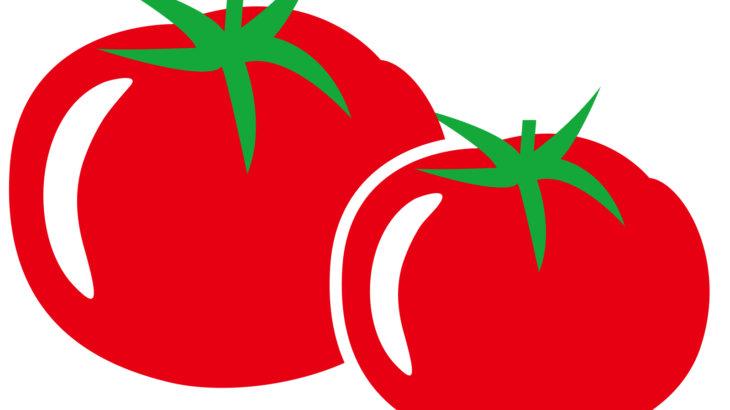 トマトの育て方は土作りが重要