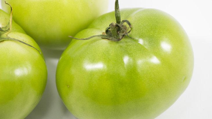 トマトの育て方!赤く ならないのはなぜ?そうならないためには!